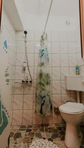 Studio Isa, Appartamenti  Sibiu - big - 32