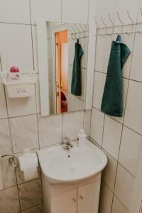 Studio Isa, Appartamenti  Sibiu - big - 29