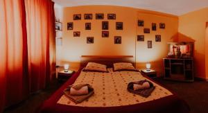 Studio Isa, Appartamenti  Sibiu - big - 46
