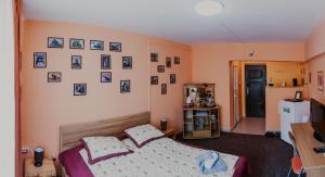Studio Isa, Appartamenti  Sibiu - big - 3