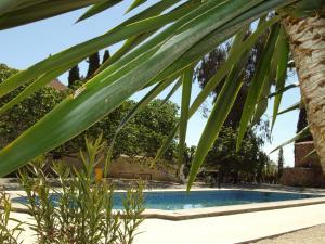 Holiday home Camino de Bobadilla - 2