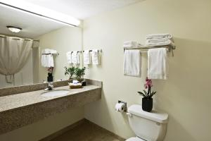 King Suite with Bath Tub - Mobility Access/Non-Smoking