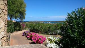 Guest House Vela Blu - AbcAlberghi.com