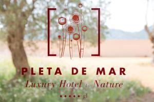 Pleta de Mar (11 of 67)