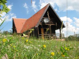 Chalet Four Season, Chalet  Zlatibor - big - 37