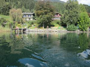 Ferienwohnung Moser am See, Апартаменты  Мильстат - big - 18