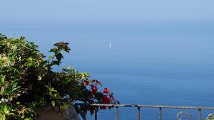 La Suite del Faro, Bed and breakfasts  Scalea - big - 37