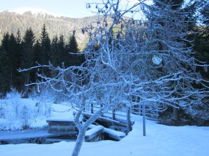 Ferienwohnung Moser am See, Апартаменты  Мильстат - big - 25