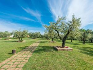Locazione turistica Il Casale, Дома для отпуска  Vescovile - big - 41