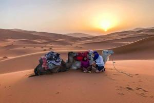 Riad Desert Camel, Hotels  Merzouga - big - 114