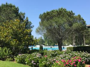 Domaine de Bordaberry, Appartamenti  Urrugne - big - 3