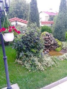 Vila Kraljevski 1, Appartamenti  Kumanovo - big - 64