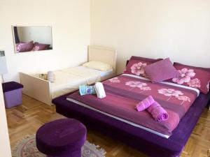 Vila Kraljevski 1, Appartamenti  Kumanovo - big - 6