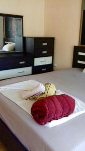 Vila Kraljevski 1, Appartamenti  Kumanovo - big - 7