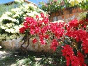 Adubai Hostel, Hostely  Alto Paraíso de Goiás - big - 44