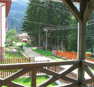 Villa Atriolum, Guest houses  Băile Tuşnad - big - 14