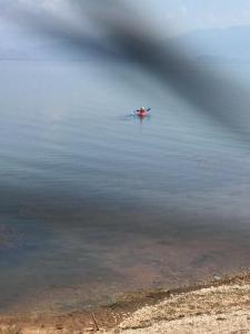 B&B Skadar Lake Murici, B&B (nocľahy s raňajkami)  Bar - big - 22