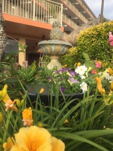 Waikiki Oceanfront Inn, Мотели  Wildwood Crest - big - 31