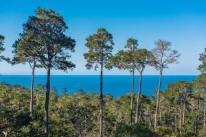 Pacific's Edge Sanctuary - Five Bedroom Home - 3707, Holiday homes  Carmel - big - 20