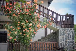 Guest House ViA, Pensionen  Sapareva Banya - big - 26