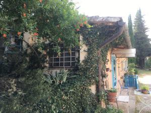 Fattoria Settemerli, Фермерские дома  Флоренция - big - 22