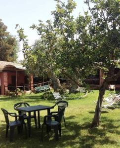 Agriturismo Su Barraccu, Farm stays  Loceri - big - 45