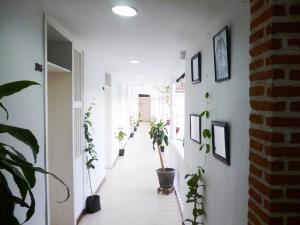 Hotel Santa Cruz, Hotel  Cartagena de Indias - big - 43