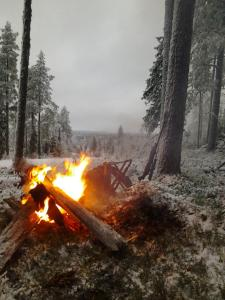 Ollilan Lomamajat, Holiday homes  Kuusamo - big - 144