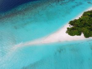 Dhigali Maldives (36 of 80)