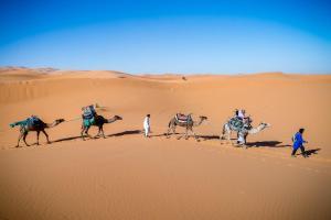Kasbah Dar Daif, Bed and breakfasts  Ouarzazate - big - 155