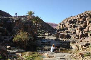 Kasbah Dar Daif, Bed and breakfasts  Ouarzazate - big - 135