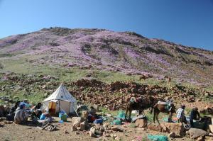 Kasbah Dar Daif, Bed and breakfasts  Ouarzazate - big - 141