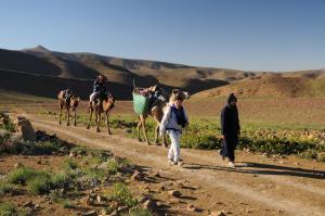 Kasbah Dar Daif, Bed and breakfasts  Ouarzazate - big - 146