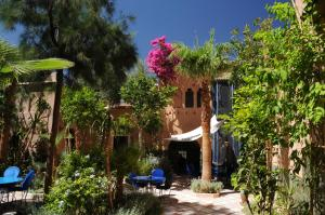 Kasbah Dar Daif, Bed and breakfasts  Ouarzazate - big - 43