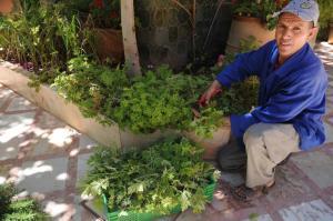 Kasbah Dar Daif, Bed and breakfasts  Ouarzazate - big - 112
