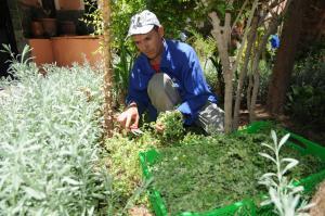 Kasbah Dar Daif, Bed and breakfasts  Ouarzazate - big - 113