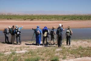 Kasbah Dar Daif, Bed and breakfasts  Ouarzazate - big - 103