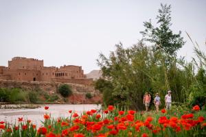 Kasbah Dar Daif, Bed and breakfasts  Ouarzazate - big - 106