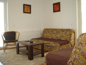 Apartments Beljić, Apartmanok  Divčibare - big - 3