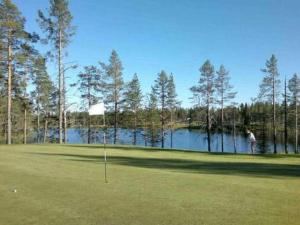 Holiday Home Villa kuukkeli, Holiday homes  Kuusamo - big - 18