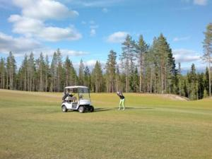 Holiday Home Villa kuukkeli, Holiday homes  Kuusamo - big - 22