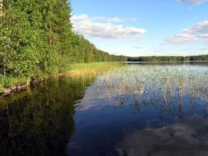 Holiday Home Riihimökki - Kivijärvi