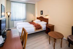 Park Hotel Rjukan, Hotel  Rjukan - big - 3