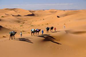 Kasbah Dar Daif, Bed and breakfasts  Ouarzazate - big - 100