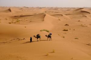 Kasbah Dar Daif, Bed and breakfasts  Ouarzazate - big - 91