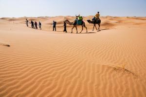 Kasbah Dar Daif, Bed and breakfasts  Ouarzazate - big - 94
