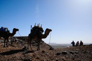 Kasbah Dar Daif, Bed and breakfasts  Ouarzazate - big - 101