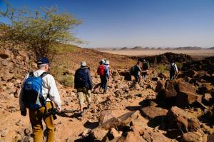 Kasbah Dar Daif, Bed and breakfasts  Ouarzazate - big - 84