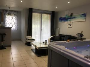 Appart&Spa, Апартаменты  Тулуза - big - 15