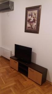 Apartment Sara, Apartments  Petrovac na Moru - big - 25